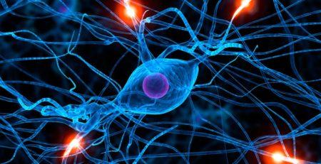 Действие массажа на нервную систему женщины